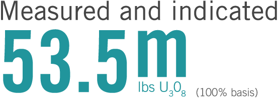 Measured and indicated: 53.5m lbs U3O8 (100% basis)